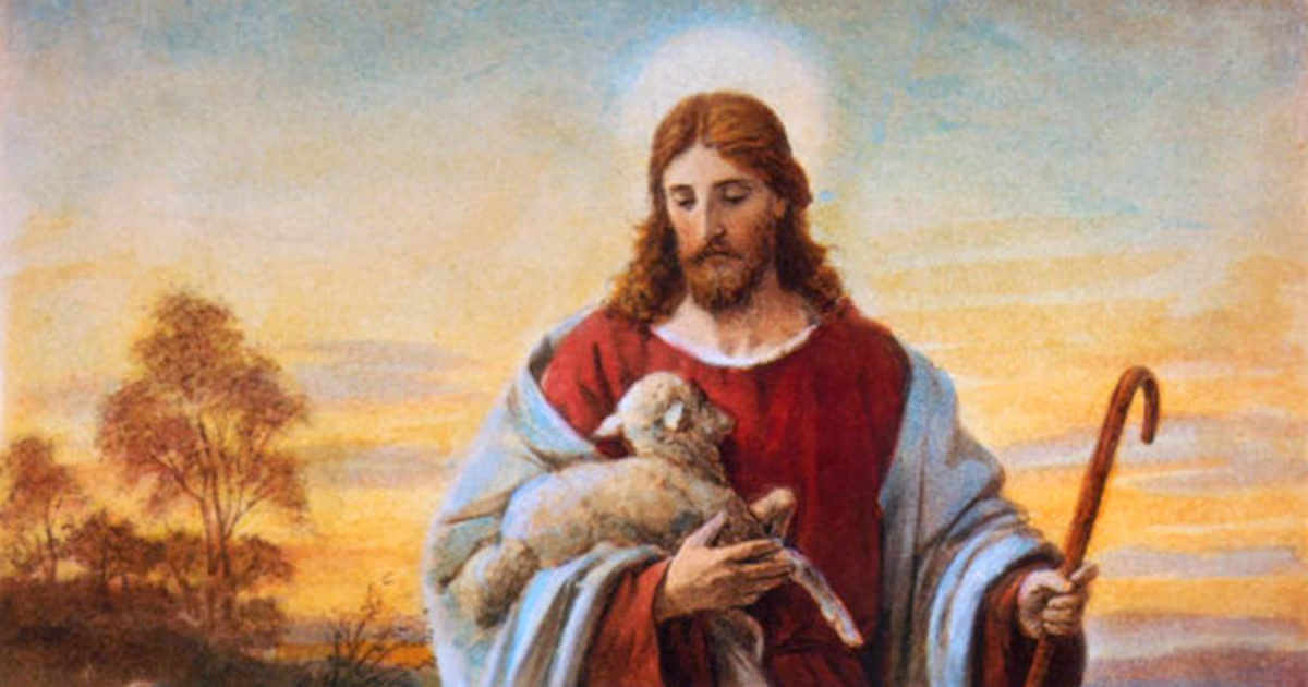 Christ the Good Shepherd of Us All - Catholic Daily Reflections